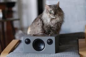 Активная <b>колонка Audio Pro</b> Addon T3+: модифицированный ...