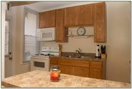 Kitchen Cabinets Springfield Mo Craigslist Kitchen Cabinets Albany Ny Cabinet Home Decorating