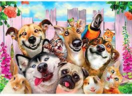 DIY Diamond Painting, <b>Dog</b> Pattern Full Diamond <b>Modern Home</b> ...