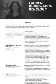 systems analyst resume samples   visualcv resume samples databasehealthcare systems analyst resume samples