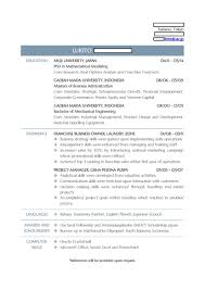 style resumes professional resume writing services lukito resume