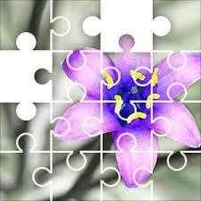 Scilla Hughii Gray Jigsaw Puzzle, 108 Piece Swirls. Scilla peruviana ...