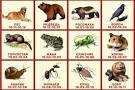 Уникальный гороскоп написанный сотни лет тому назад
