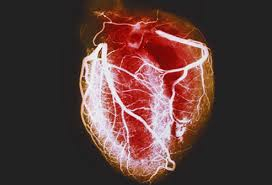 heart disease in women symptoms and preventionheart disease  causes of a heart attack