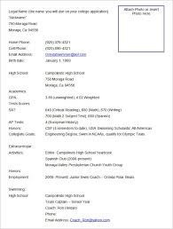 resume format for job application template resume layout samples creative professional resume samples standard resume format template