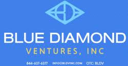 Bildergebnis für bLUE DIAMOND VENTURES INC