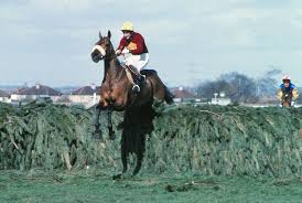 racehorses to remember Red Rum