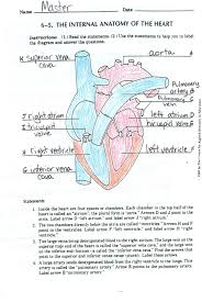 circulatory system heart diagram ms connell circulatory system heart diagram click here to access a completed version of your heart diagram