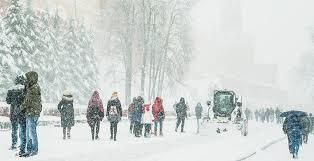В Москве впервые за годы будет настоящий <b>снежный Новый год</b> ...
