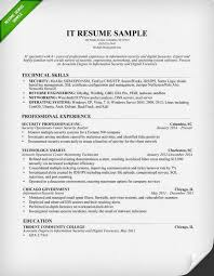 resume examples  example resume skills resume objective examples    it resume sample   technical skills and professional experience as security professionals