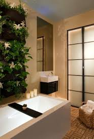 image bathtub decor: vertical planters vertical garden above bathtub vertical planters