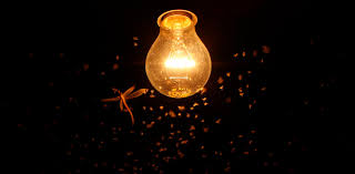 There's a fly in the ointment of <b>solar</b>-<b>powered LED</b> lighting