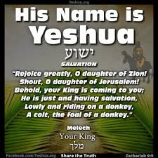Image result for Zechariah 9:9