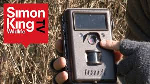 How to Use a Trail <b>Camera</b> - YouTube