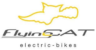 Affordable <b>Electric Bikes</b> Hawkes Bay, Waikato, Bay of <b>Plenty</b>