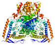 pyruvate dehydrogenase (lipoamide)