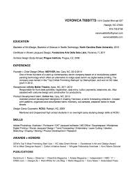 copy of resume template template copy of resume template