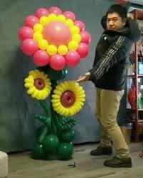 ШАРЫ: лучшие изображения (501)   Воздушные шары, Праздник ...