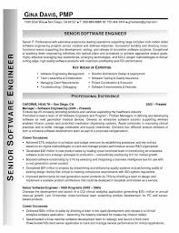 Resume Examples   Resume Format Software Engineer Summary Skill