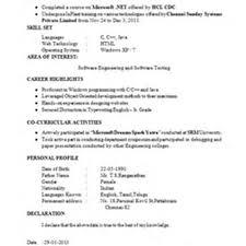 professional resume format  resume template     professional resume format for freshers     pic  professional resume format for freshers free download