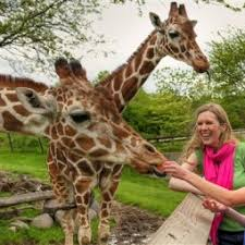 Everything You Need to Know About Visiting Indianapolis Zoo