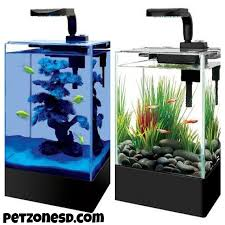 newly arrived desktop aquarium nano tanks for your office or home tabletop pet zone tropical fish san diego california aquarium office