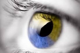 Types of <b>Colour Blindness</b>