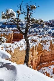 17 best images about utah zion national park moab utah~bryce canyon national park in bryce sunset point
