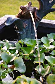 diy patio pond: patio pond spitter frog stonegableblogcom more