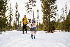 Polar Trex™ <b>Winter Dog</b> Boots | Snow Boots for Dogs | Ruffwear