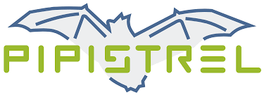Resultado de imagen de pipistrel logo