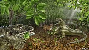 Extinct lizard named after The <b>Doors</b>' singer <b>Jim Morrison</b> - BBC News