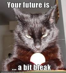 bleak-future-lolcat.jpeg via Relatably.com