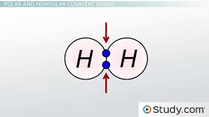 inorganic chemistry review lesson plans videos lessons com chemical bonds iii polar covalent