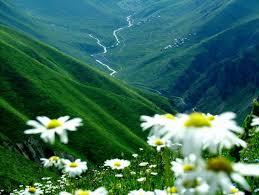 لكل محبي صور الطبيعة  اكبر تجميع لصور الطبيعة Images?q=tbn:ANd9GcSoDpTlxCZfNxqcN3eeni4yAXZcla-Dque5GUpe1C_CAHcAhHff1A