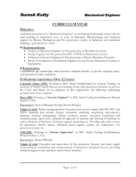 sample it director resume it resume writer  professional engineer