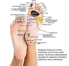 Здоровье. Биологически активные точки на стопе ноги человека ...