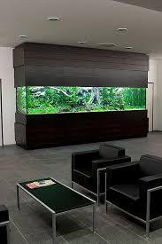 wooden big aquarium in office aquarium office