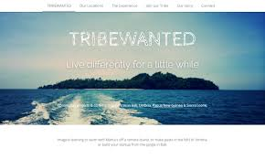how to make your own website best website builder strikingly tribewanted