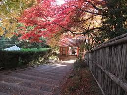 おすすめ!京都のおしゃれな雰囲気のカフェ
