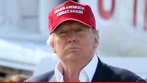 Image result for donald trump make america great again