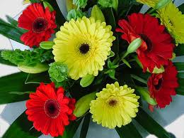 Image result for fresh flowers