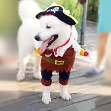 Cool Halloween Pirate Cute Dog Pet Cosplay Costume ... - Vova
