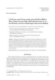 (PDF) Colchicum cupanii Guss. subsp. glossophyllum (Heldr.) Rouy ...