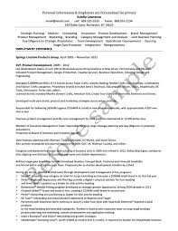 résumé samples chesapeake career management services before consumer product marketing executive 1