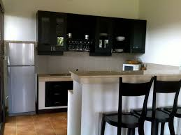 apartment kitchen design: apartmentnatural wood cabinet for small kitchen design in apartments idea charming black and white