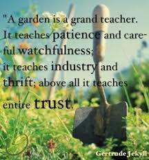 Garden Quotes on Pinterest | Gardening Quotes, Gardening and Gardens