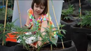 Výsledek obrázku pro léčba dětí magazín legalizace
