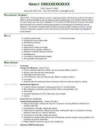 ideas about Sales Resume on Pinterest   Resume Skills     Mr  Resume