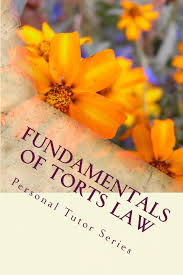 buy the nature of torts law   a summary for    essays   a model    fundamentals of torts law   electronic law book   e book    writers of  published model bar exam essays  look inside